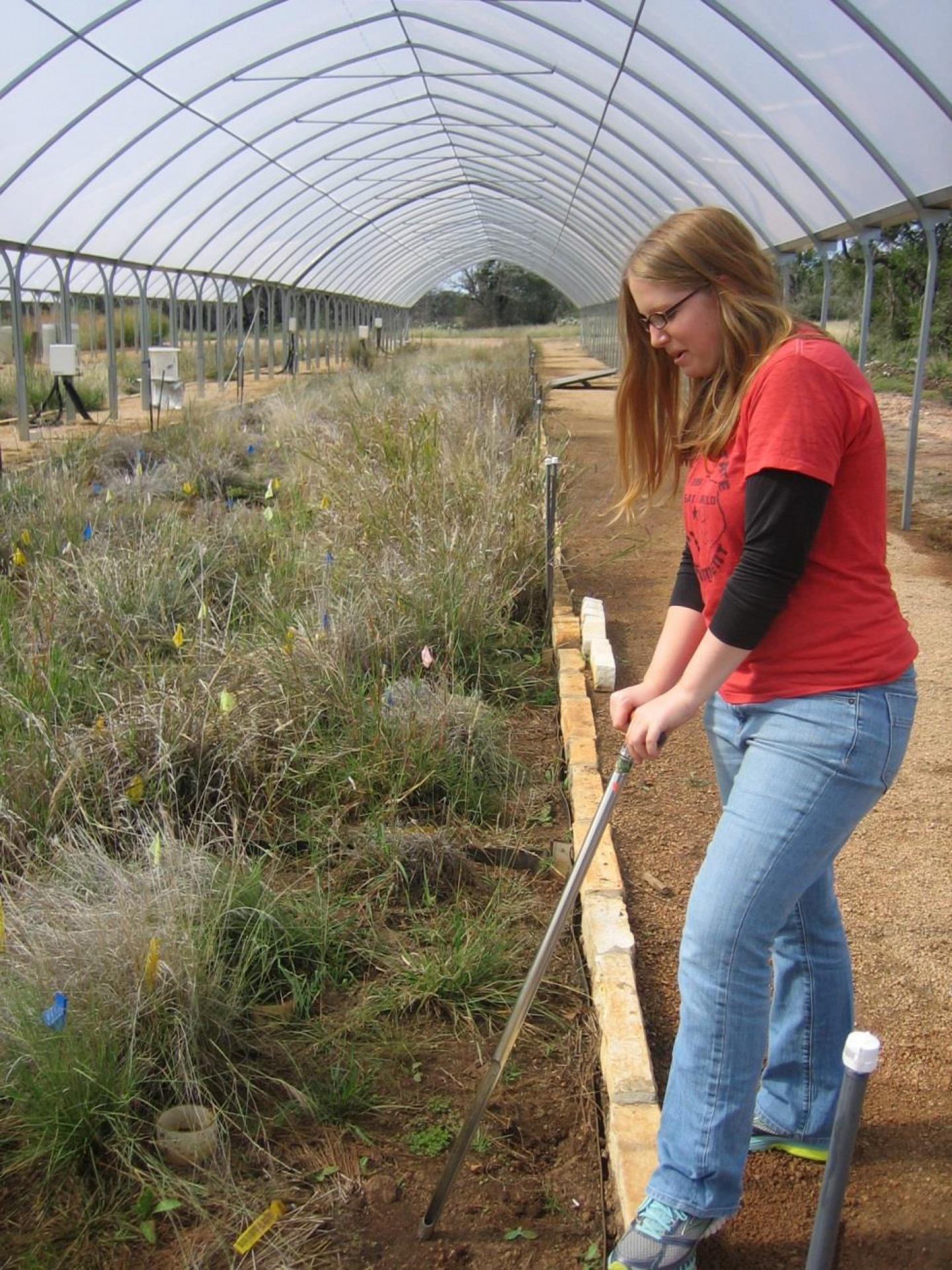 Sampling Soil Microbes
