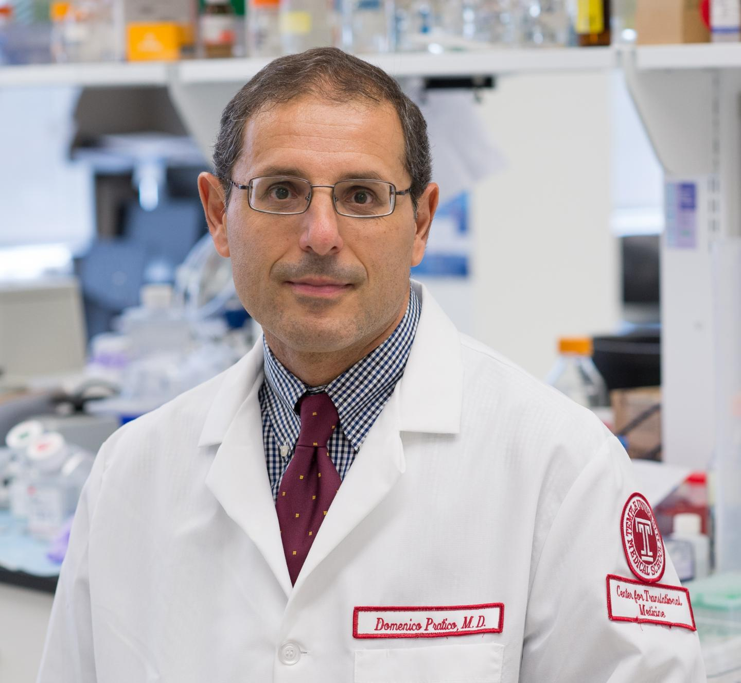 High-Fat Diet In Utero Protects Against Alzheimer's Disease Later in Life, Temple Researchers Show in Mice