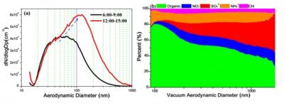 Particle Number Size Distributions