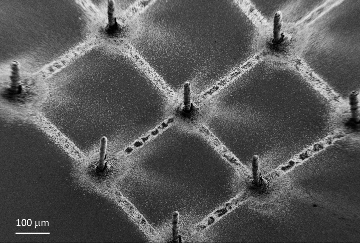 Example of the deposited perovskite pillars, defining a pixel for the creation of an image.