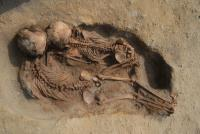 Hundreds of Children and Llamas Sacrificed in a Ritual Event in 15th Century Peru (2 of 2)