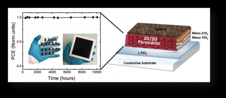A Visual Summary of the Study