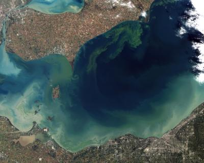2011 Lake Eerie Algal Bloom