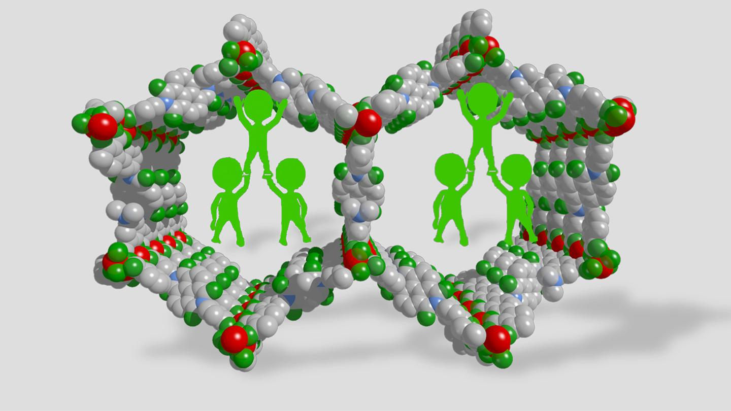 Polymer Braces, Placed inside Large-Pore MOFs, Help to Inhibit the Collapse of the Framework