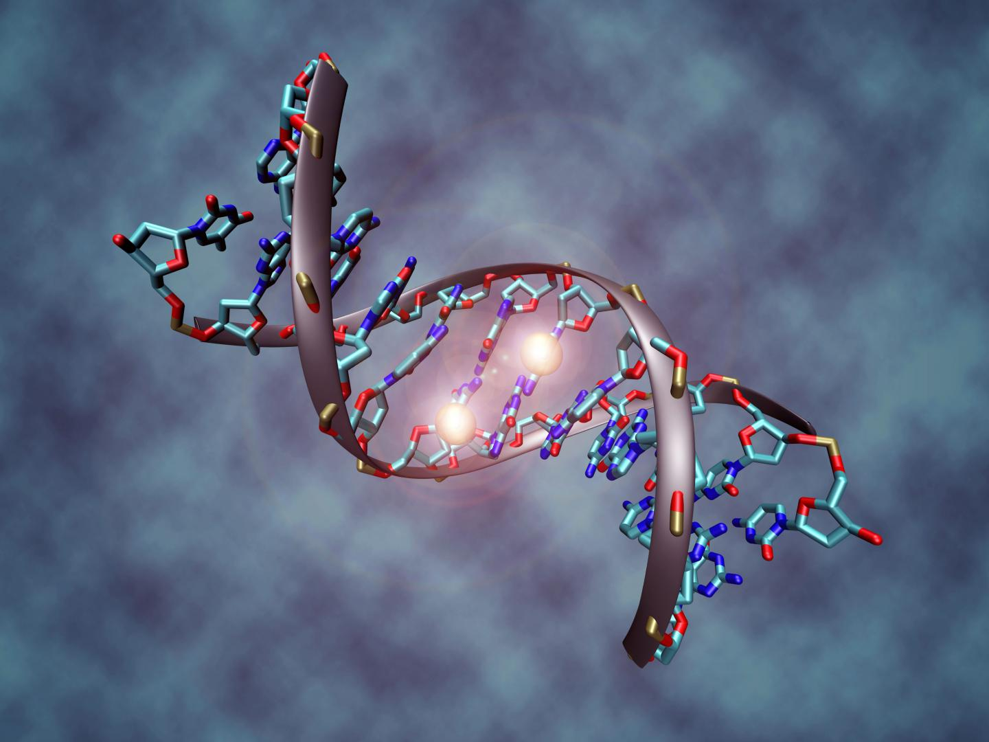 DNA: The Language of Personal Genomes
