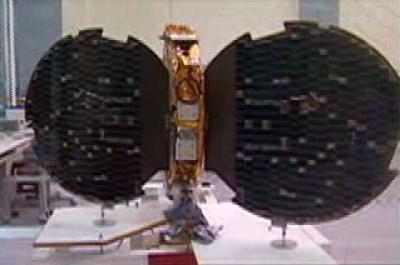 Microsatellite