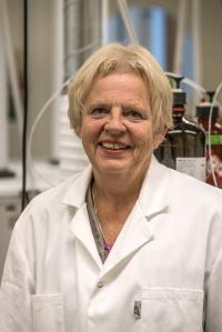 Ann-Sofie Sandberg, Chalmers University of Technology