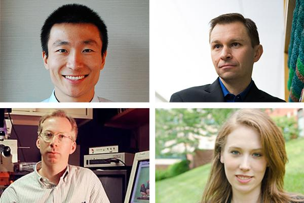 Harvard Medical School School Scientists Receive NIH Director's Awards