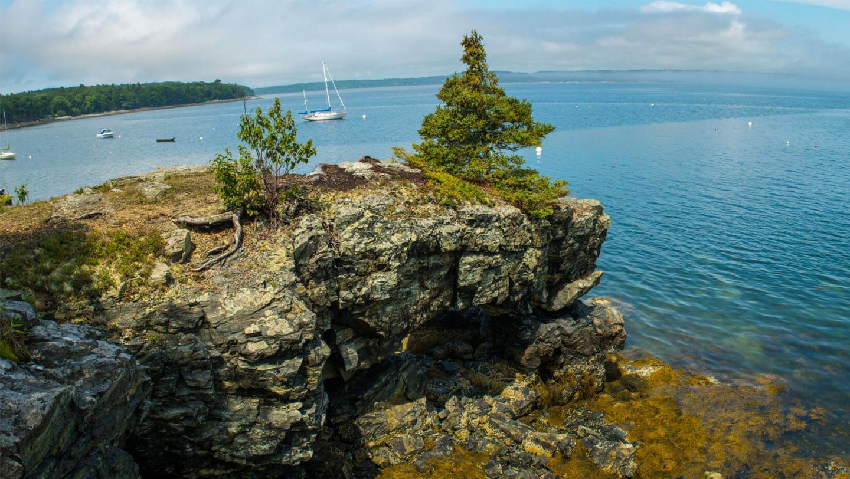 Coastline of the Gulf of Maine
