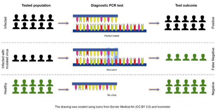 Illustration of COVID-19 Testing Outcomes