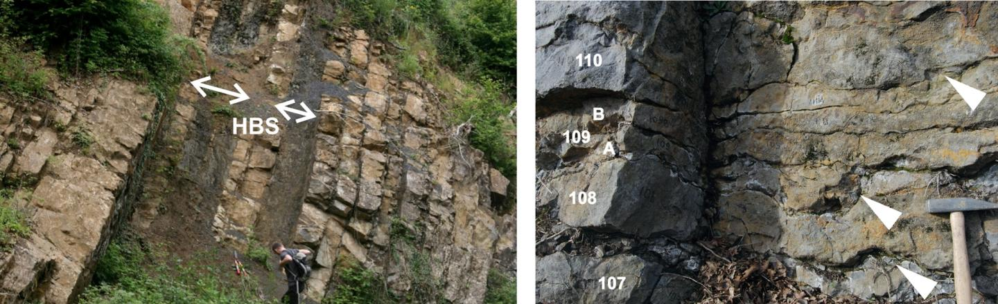 Rock layers marking the transition from the Devonian to the Carboniferous geological periods
