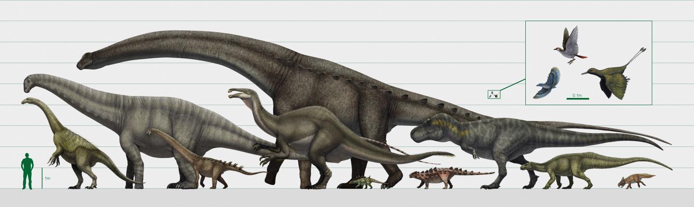 Dinosaur size range