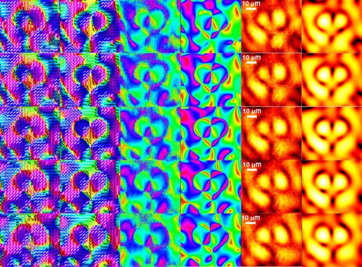 Polarization properties