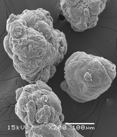 Microplastics Threat