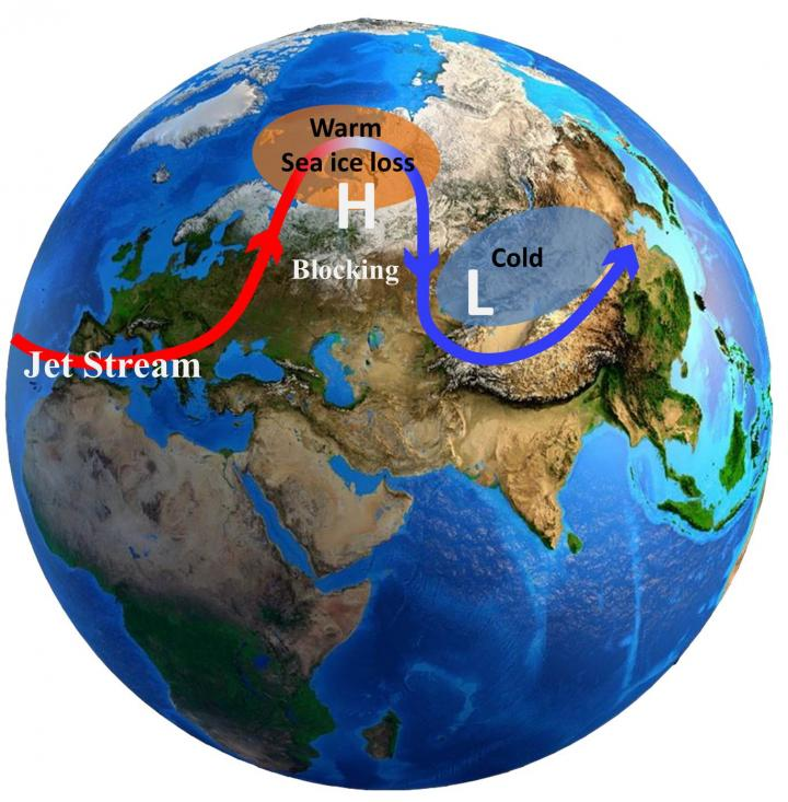 Arctic Warming and Eurasian Cold Events