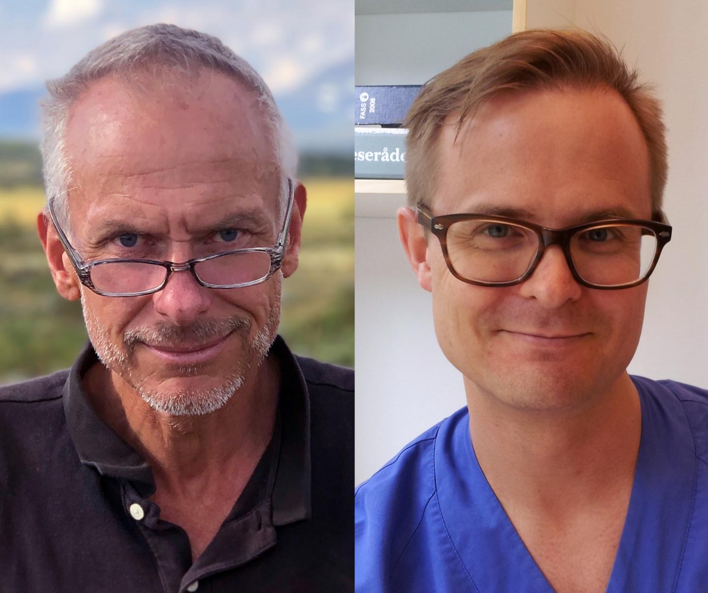 Magnus Gisslén and Arvid Edén