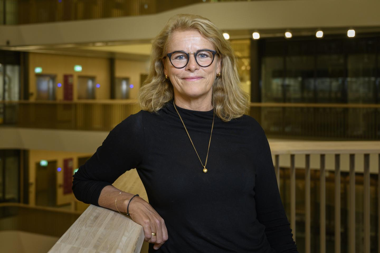 Elisabet Stener-Victorin, Karolinska Institutet