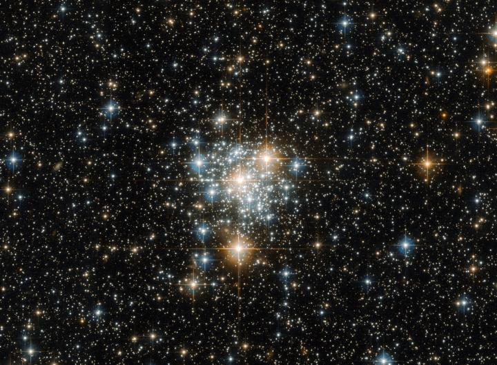 Toucan and the Cluster