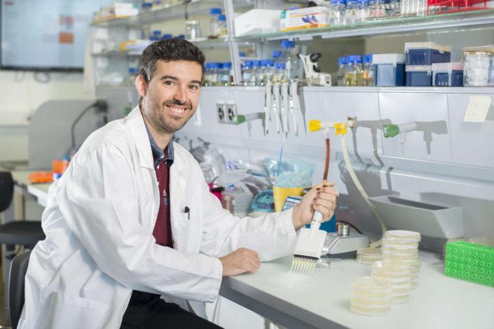 Dr. Arnau Domenech, University of Groningen