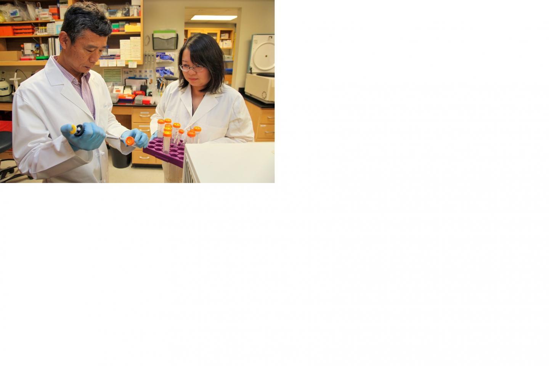 Drs. Yanbin Dong and Li Chen