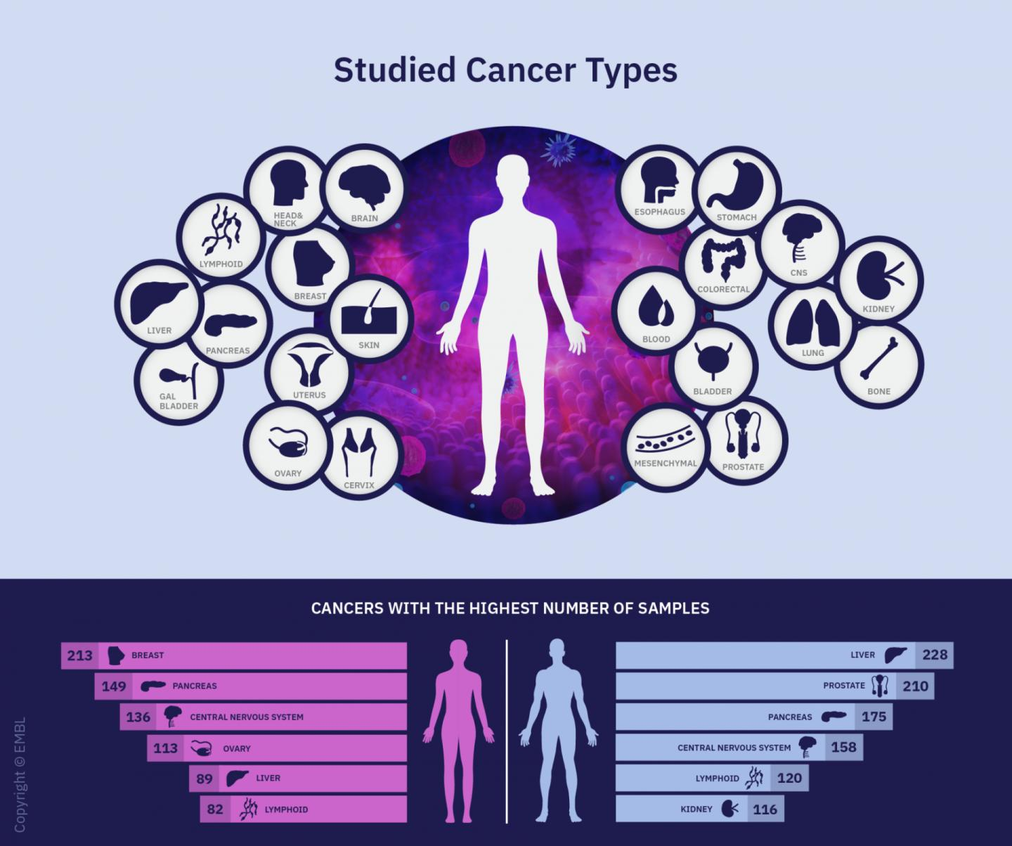 Cancer Types Studied