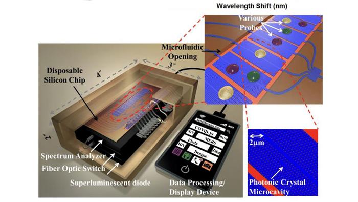 Sample optical detection platform for rapid COVID-19 diagnosis.