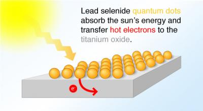 Hot Electron Transfer with Quantum Dots