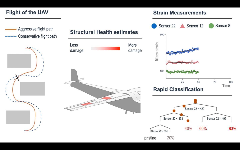 Structural Health Schematic