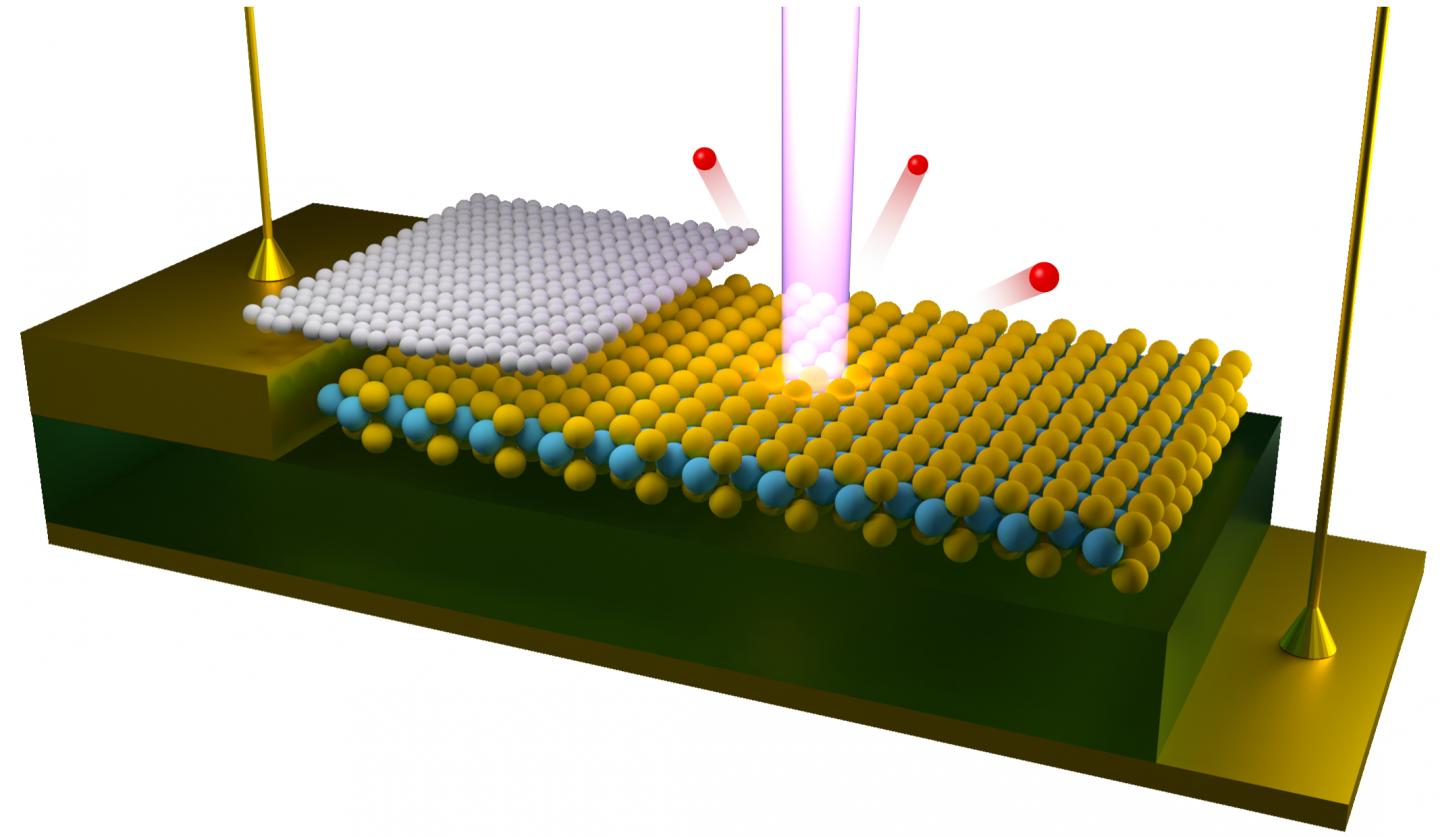 Beam of Light Focused on a Two-Dimensional Semiconductor Device