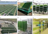 Industrial scale micro-algal bioreactors.