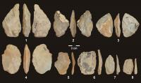 Stone tools from the Middle Paleolithic at Stajnia Cave