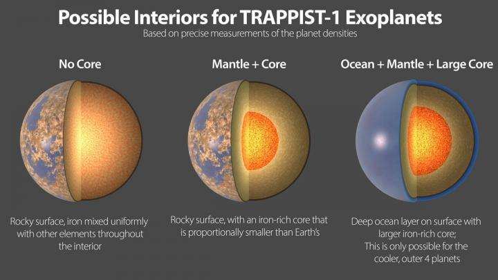 Possible Interiors of the TRAPPIST-1 Exoplanets