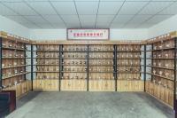 China's community seedbanks (2)