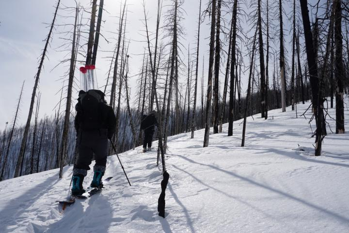 Forest Fires Accelerating Snowmelt across Western US, Study Finds (1 of 2)