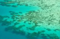Near-Lizard Island Reefs