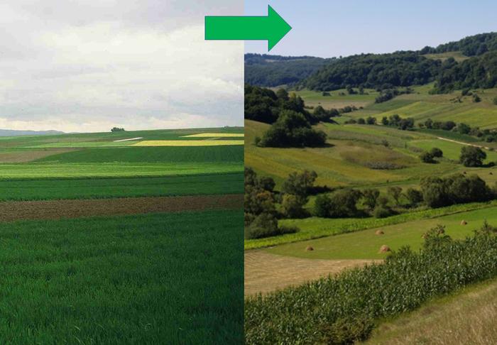 Landscape comparisons