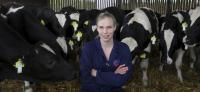 Cows Clock-in for Monitored Mealtimes (3 of 3)