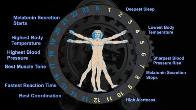 The Circadian Clock (1 of 2)