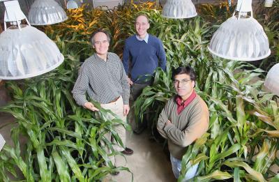Guri Johal, Steve Schofield, and Michael Zanis