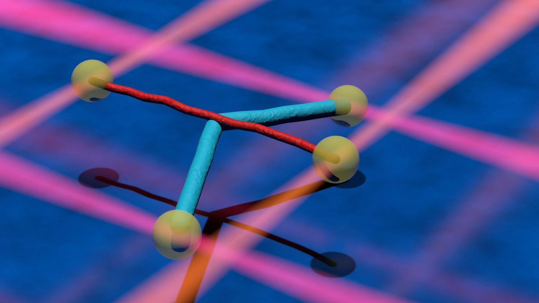 Microtubule and intermediate filament