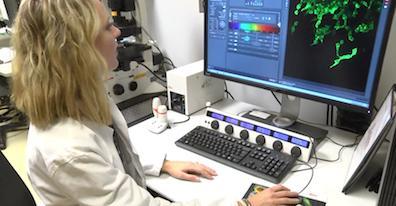 Jessica Konen, Emory Health Sciences