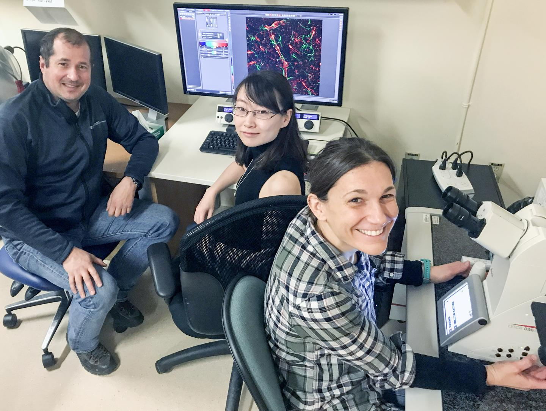Karim Fouad, Yaqing Li, and Ana M. Lucas-Osma, University of Alberta