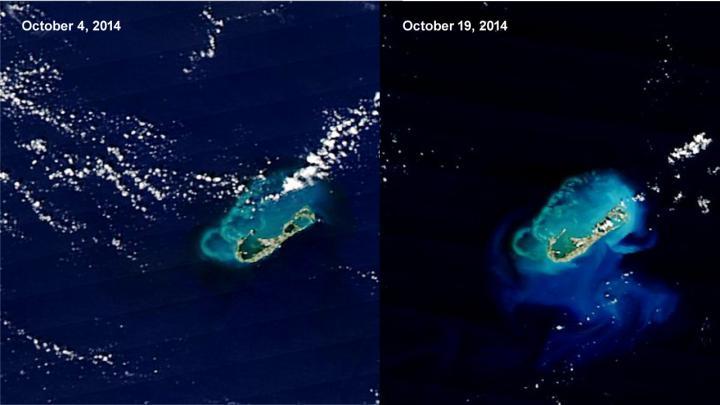 MODIS Image of Bermuda