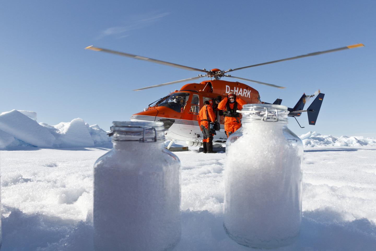Snow Samples from Arctic Sea Ice