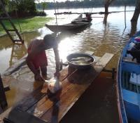 Fisherman Preparing Catch