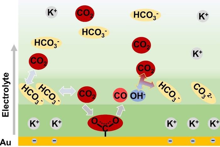 REDUCTION PROCESS OF CO2 IN CO2-SATURATED KHCO3 SOLUTION OVER AU CATALYST