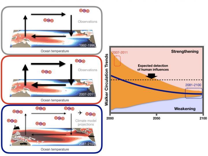 Schematic of Pacific Walker Circulation Changes