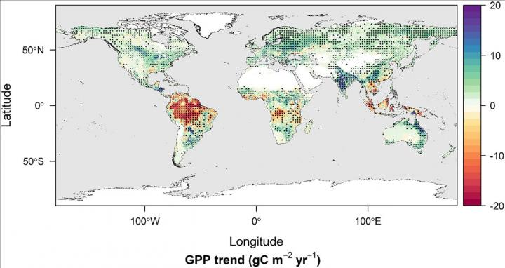 Changes in global gross primary productivity