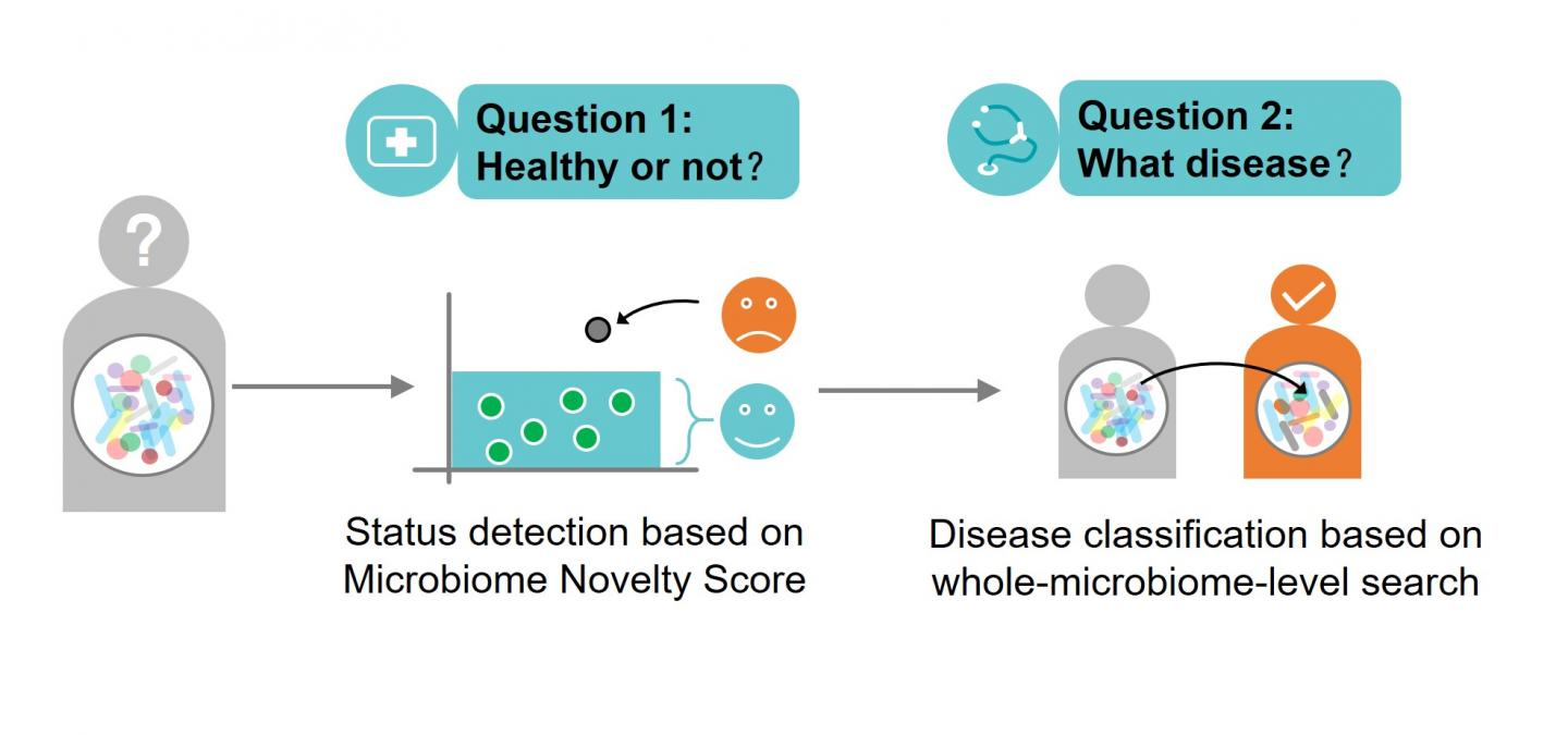 Multiple Disease Detection and Classification Via Microbiome Search