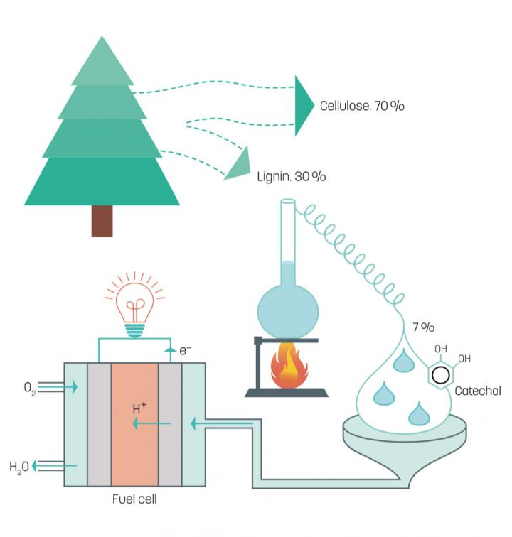 Illustration of the Fuel Cell